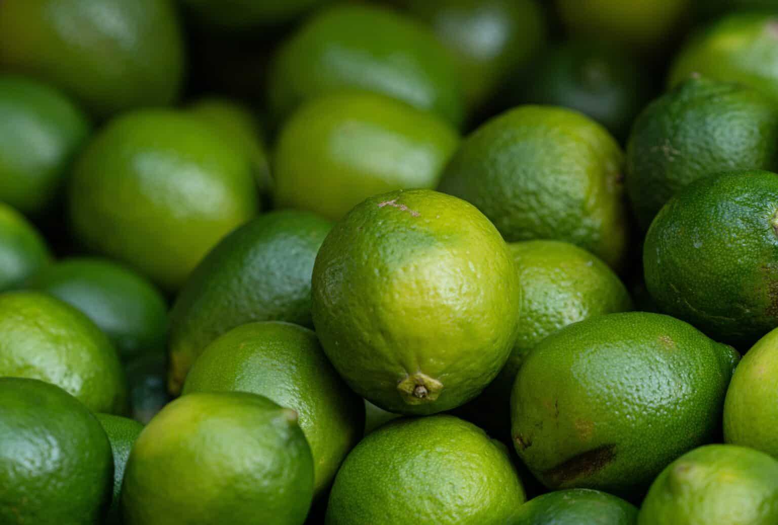 1 - O limão usado no preparo do remédio caseiro era o tahiti, cultivado em São Paulo. - Foto de Lars H Knudsen no Pexels