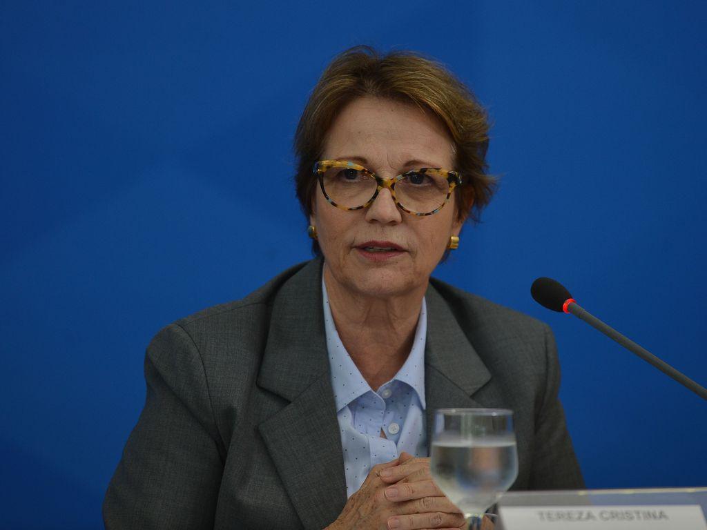 """""""Agronegócio foi o motor da economia e conseguiu não deixar nosso PIB cair mais"""", defende Tereza Cristina"""